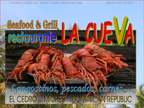 specialized in fish, seafood and grill
